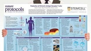 0977-03-02_Production_of_CAR-T_Cells.jpg