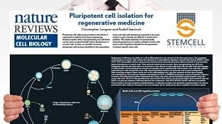 0977_02-01C_Pluripotent_Stem_Cell_Biology.jpg